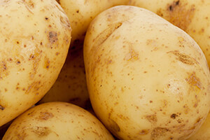 symbolbild-weisse-kartoffeln